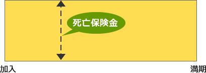 jin_28_01